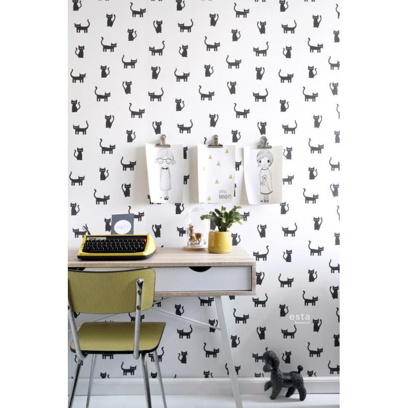 bureau papier peint noir et blanc chaton