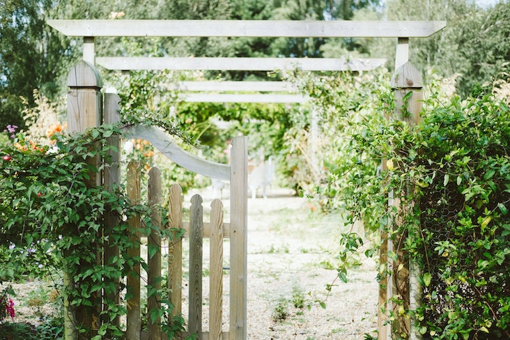 essentiel jardin plante et conseils amenagement