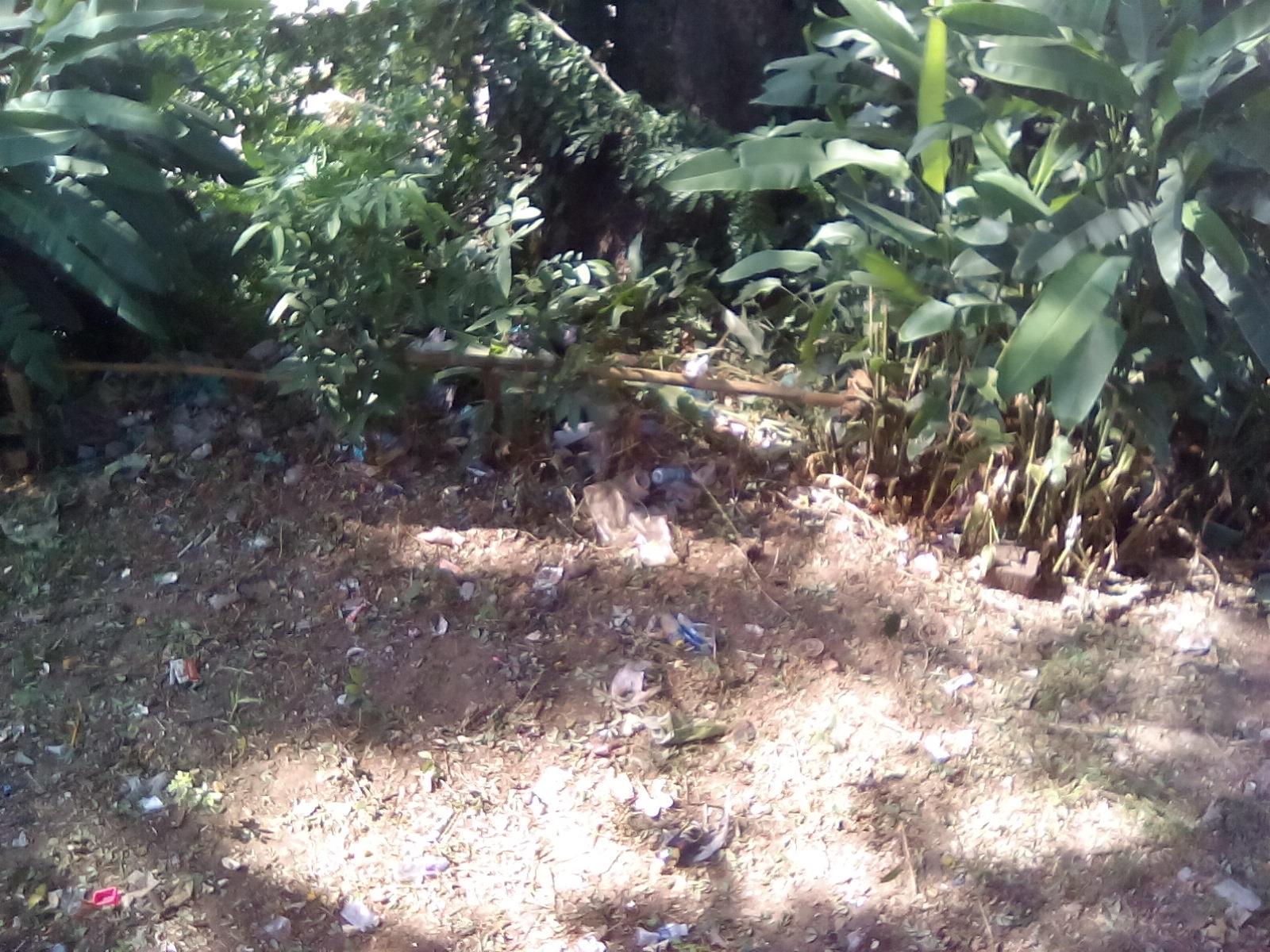 dechet asie laos nature poubelle