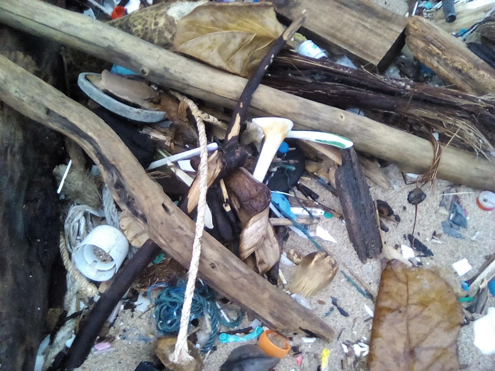 poubelle koh lanta thailande