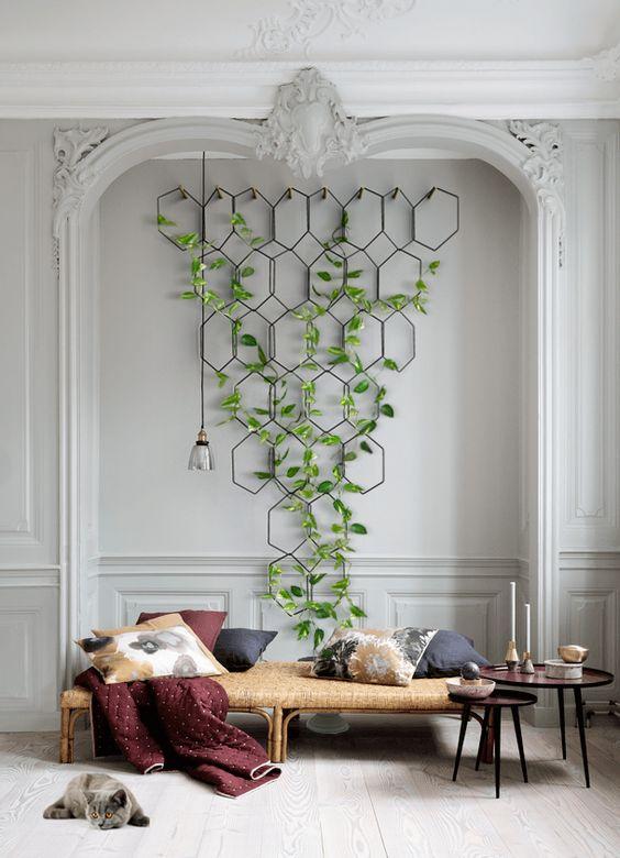 plante grimpante structure design murale