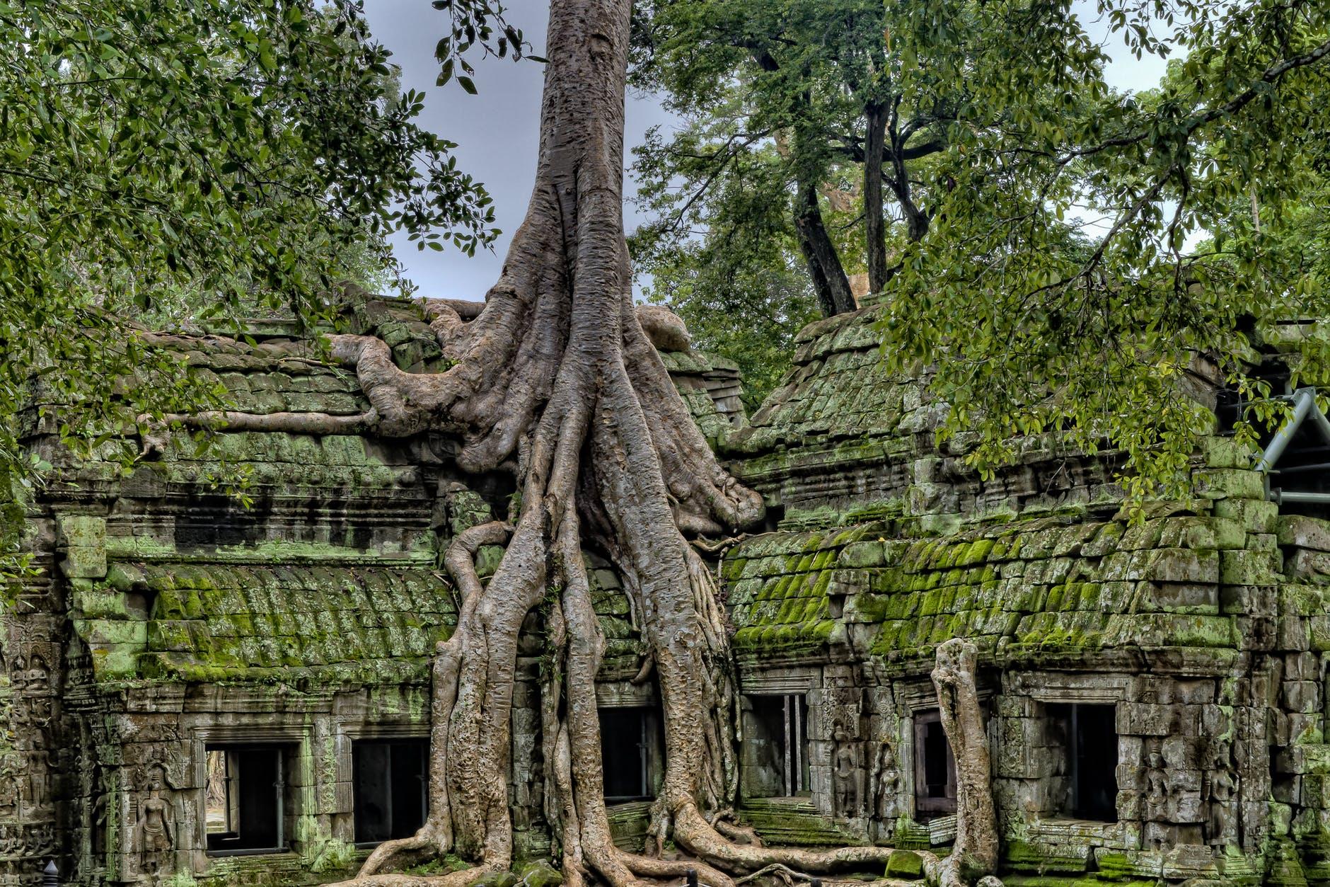 nomade cambodge projet voyage
