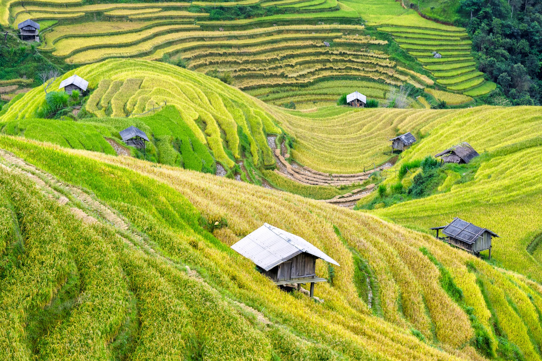 nomade vietnam projet voyage