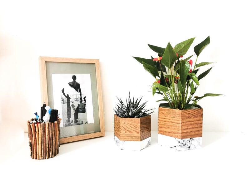 plante cache pot bois marbre