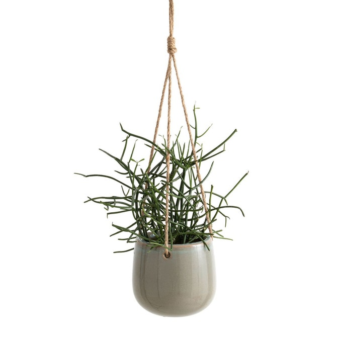 plante cache pot suspendu ceramique