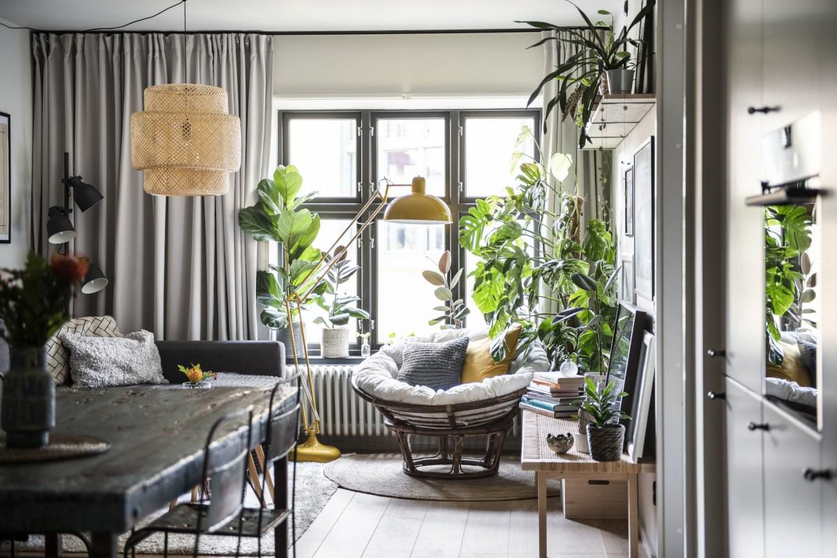 creer jardin interieur confortable