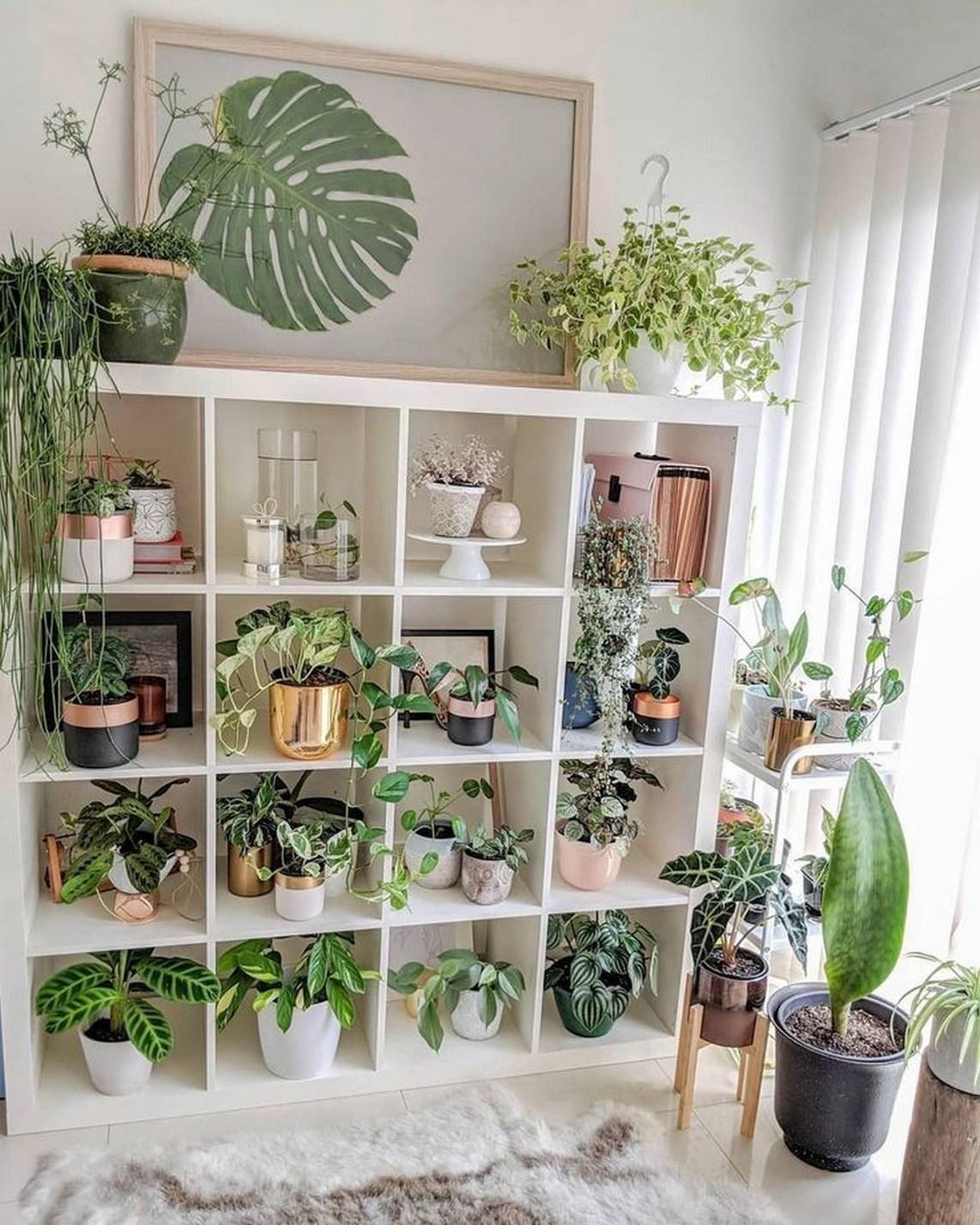 creer jardin interieur organiser plantes vertes