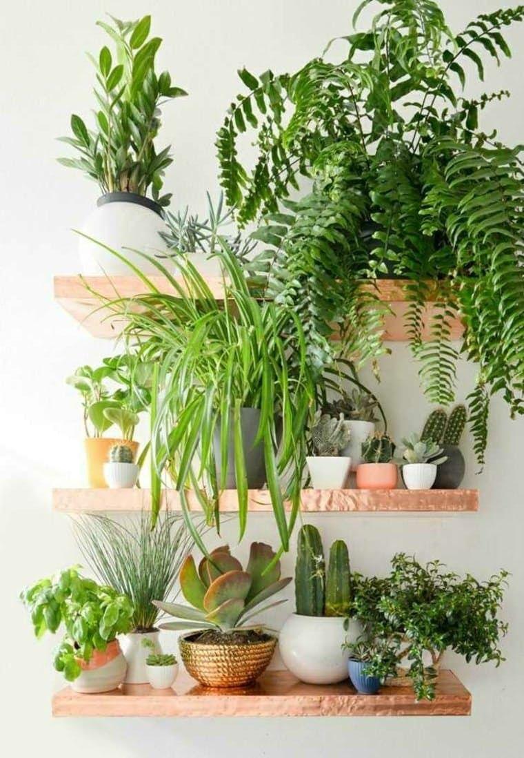 creer jardin interieur vertical