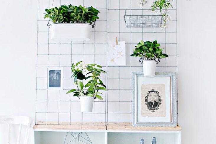 jardiniere interieure ou trouver