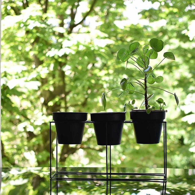 selection deco jardiniere interieure petit format
