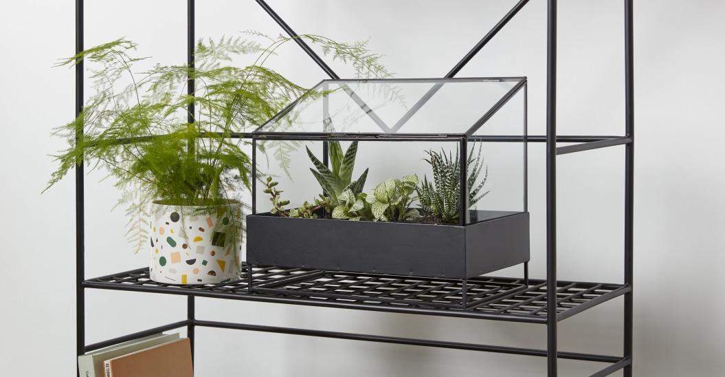selection deco jardiniere interieure terrarium mini serre