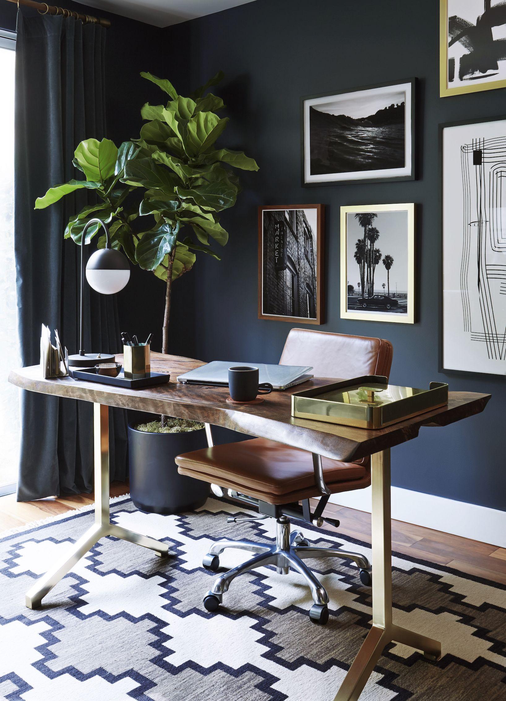 couleur foncee bureau plante