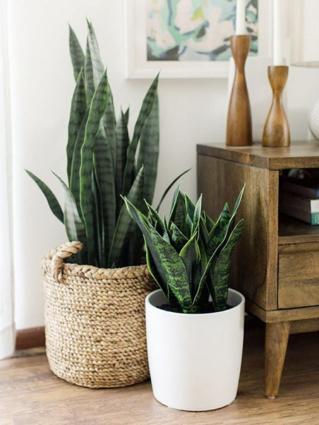 décoration cache-pot panier style naturel
