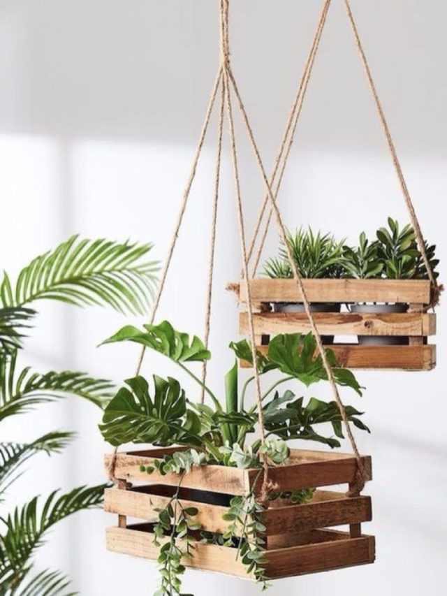 décoration cageot recup plantes suspendues