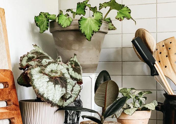 interieur durable decoration petits gestes eco-responsables