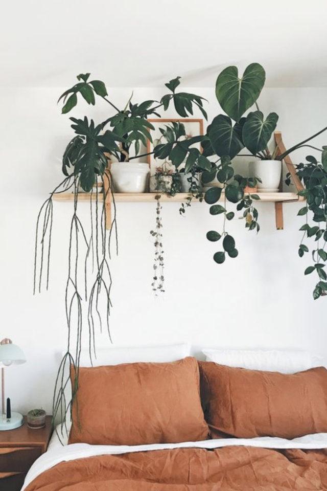 style deco couleur terracotta nature plantes