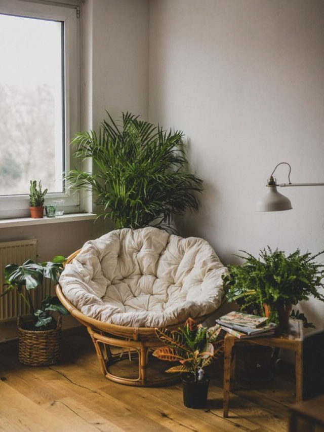 papasan salon style nature