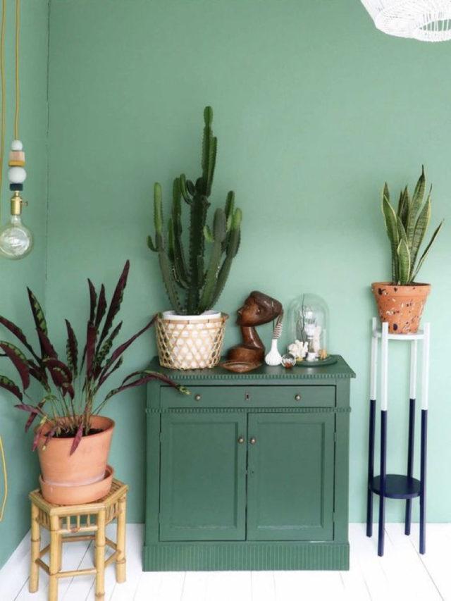 peinture vert amande meuble vert sapin idee salon