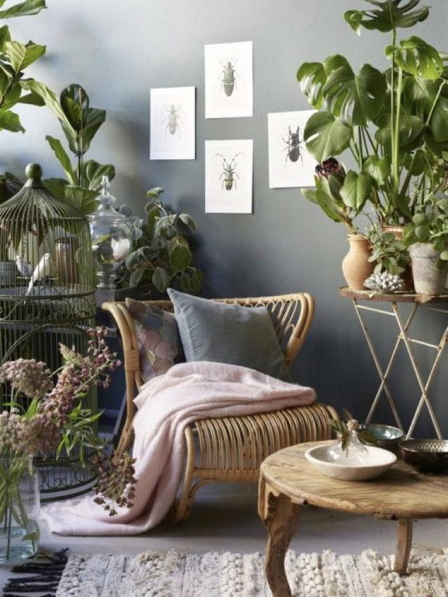 salon idee decoration nature chic