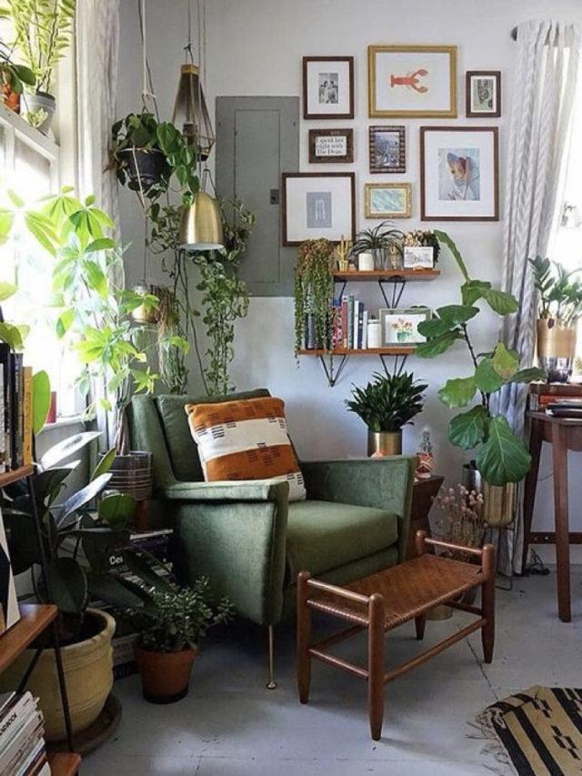salon classique nature chic fauteuil vert confortable