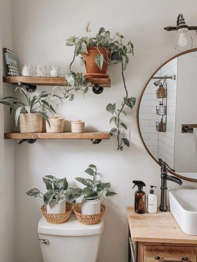 salle de bain plante verte etagere dessus toilette