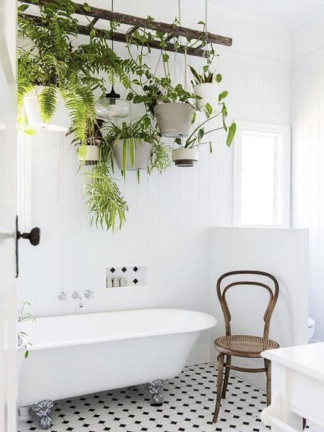 salle de bain echelle suspendue plante interieur