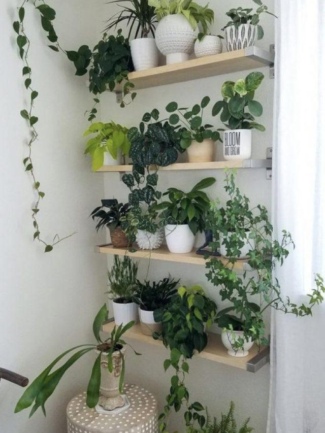 composition deco plante verte et etagere salle de bain
