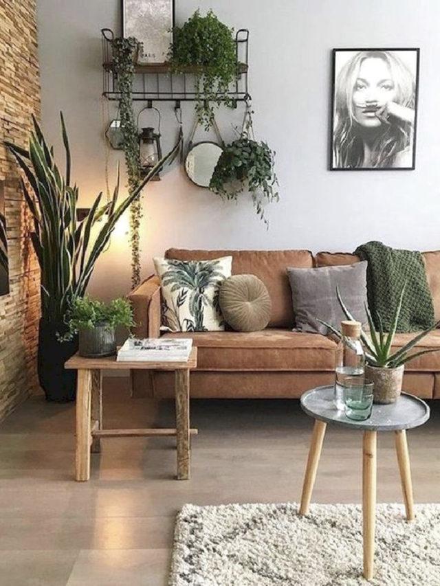 joli petit salon canapé cuir plantes