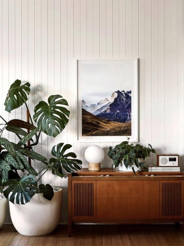 meuble recup années 50 déco plantes salle a manger