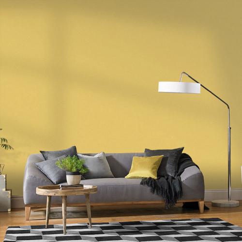 salon nuance de jaune franc peinture