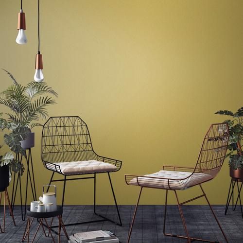 salon nuance de jaune naturel peinture