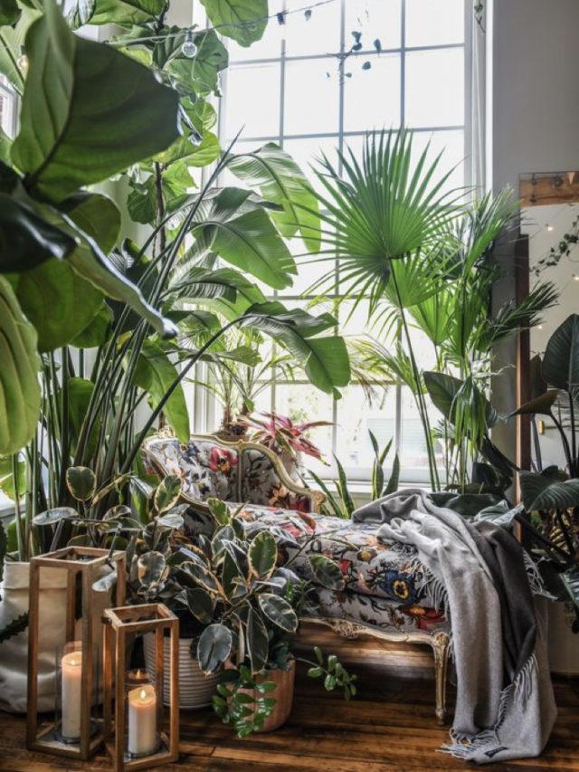 10 idees a copier jardin hiver meridienne