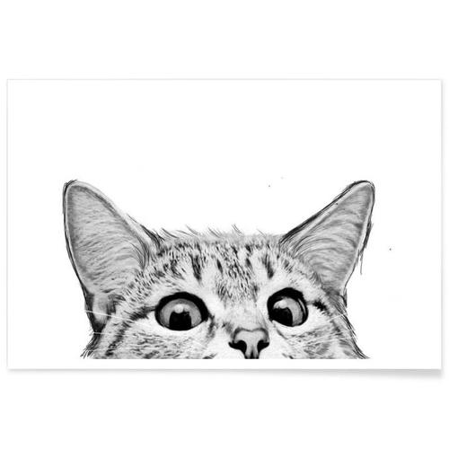 affiche deco cadeau à offrir chat noir et blanc