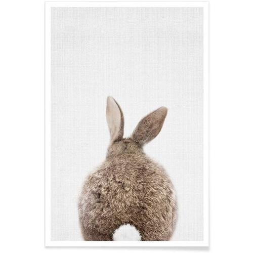 affiche deco cadeau à offrir lapin