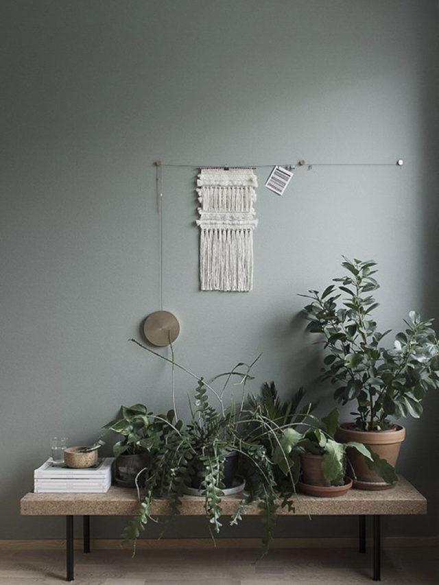 salon deco vert sauge macramé et plante