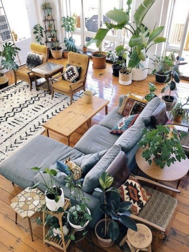 conseil decoration salon eco friendly plantes moderne