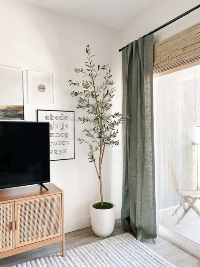 salon décoration rideaux vert sauge
