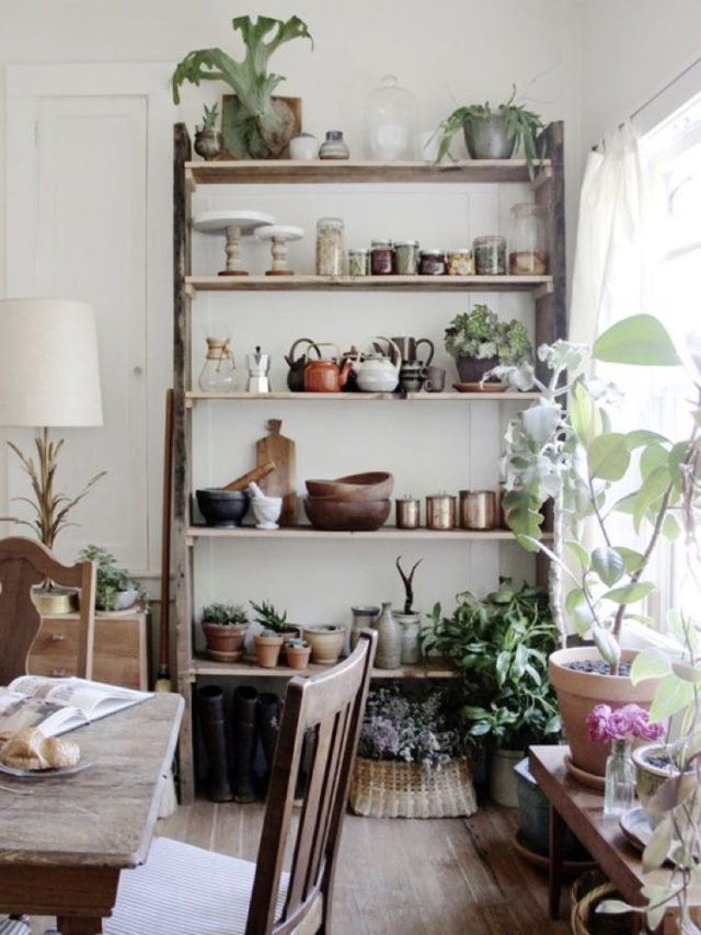 salle a manger style nature exemple plante etagere a poser