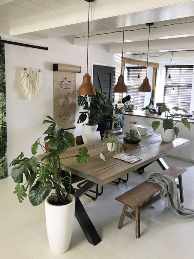 salle a manger style nature moderne et chaleureuse