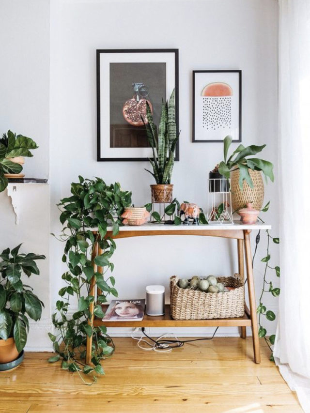 salle a manger style nature moderne console plante deco murale