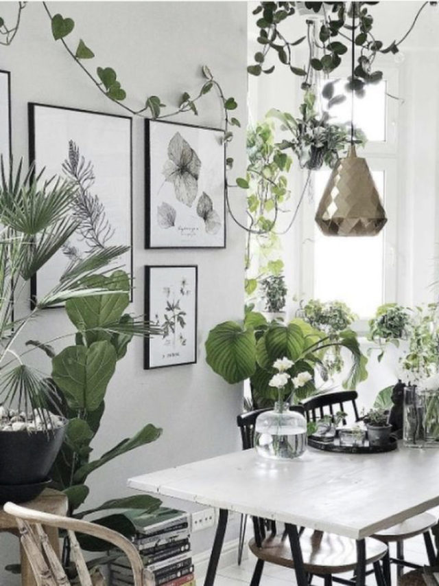 salle a manger style nature exemple moderne urban jungle