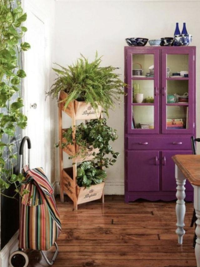 salle a manger style nature exemple meuble parisien peint caisse plantes