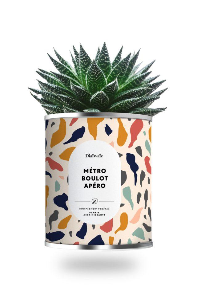 cadeau fan aperitif  cactus metro boulot apéro