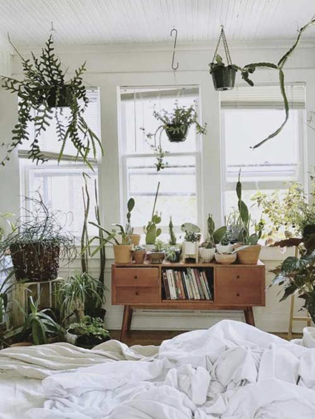 chambre style nature chic exemple meuble mid century recup + plantes