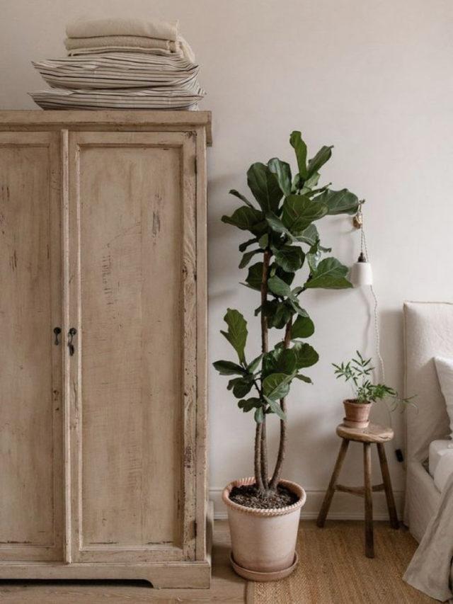 chambre style nature chic exemple armoire en bois + plantes