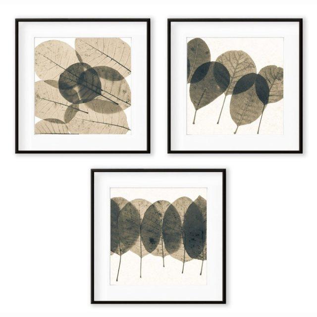 deco entree cadre affiche lot 3 cadres motifs feuilles décoration naturelle
