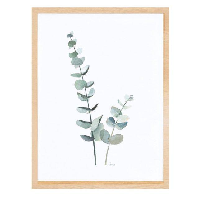 deco entree cadre affiche photo eucalyptus decoration naturelle a encadrer