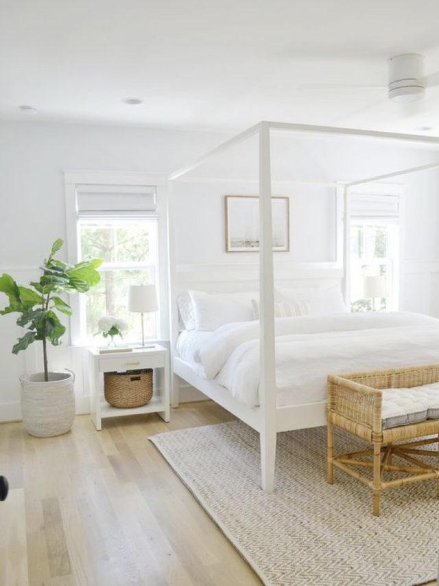 decoration chambre blanche exemple lumiere naturelle et plante verte