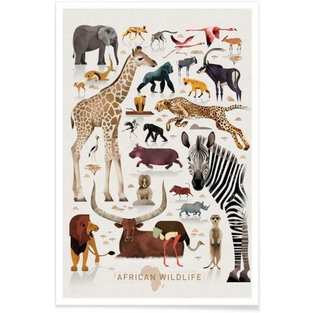 enfant cadeau noel deco affiche animaux sauvages