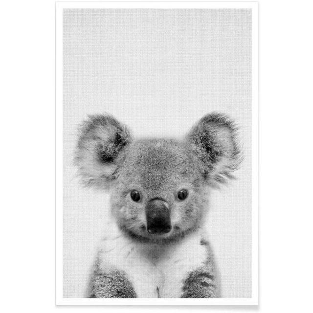enfant cadeau noel deco affiche Koala mignon